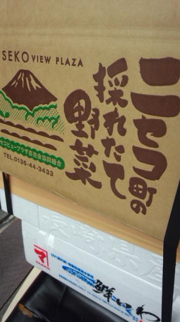 北海道ニセコひらふより