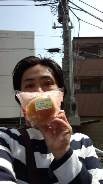 吉野桜ほぼ?満開です!